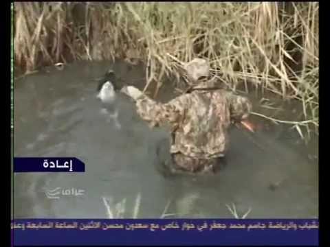 مكافحة الخنازير في محافظة صلاح الدين العراقية