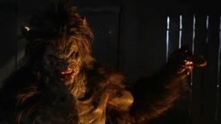 Big Bad Wolf : voyons si tu as des couilles