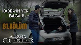 Kırgın Çiçekler 81.Bölüm - Eylül, Kader için Kemal'e yalvarıyor!