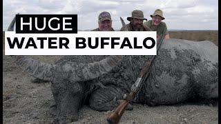 SCi Water Buffalo 'Film'
