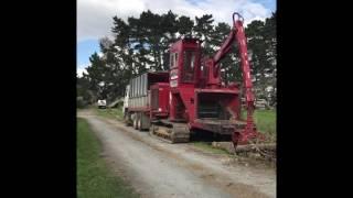 Shelterbelt removal, Waiuku Orchard