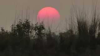 Chitwan, Nepal - wildlife and funky sun viewing.