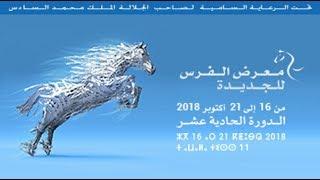 حصريا على القناة شاهد أخر فعاليات معرض الفرس بالجديدة في دورته الحادية عشر 2018
