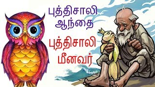 The Clever Owl &  Clever Fisherman   புத்திசாலி  ஆந்தை + புத்திசாலி  மீனவர்   Tamil Stories for Kids