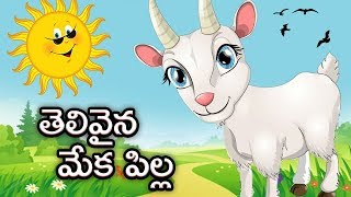 Kids Animated Stories | Telivaina Meka Pilla | Moral Stories In Telugu For Children | Bommarillu