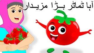 Aaha Tamatar Bada Mazedar and More | آہا ٹماٹر بڑا مزیدار | Tomato Song | Urdu Rhymes for Babies