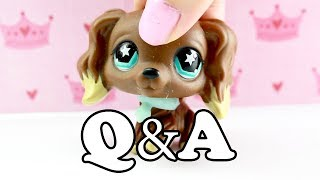 LPS Q&A! HAIR COLOR?! FAVORITE SONG?!