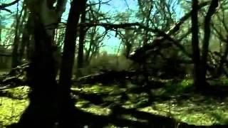 Hombre Y Tierra (The Woodsman) Found Footage Trailer