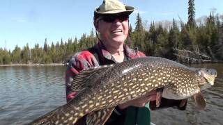 White River Air Fishing Overview