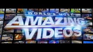 amazing video, amazing videos of the world stunts must watch ✅