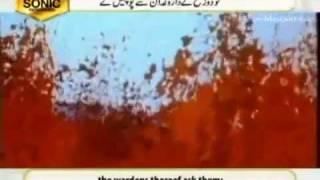 Sura Mulk  - Beautiful Recitation by Qari Syed Sadaqat Ali