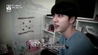 BTS JIN and his new pets