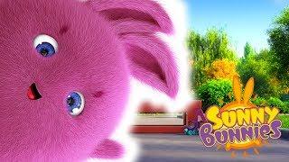 Cartoons for Children | Sunny Bunnies SUNNY BUNNIES BEST OF BIG BOO | Funny Cartoons For Children