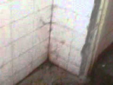 Xxx Mp4 Toilet Babasaheb Ambedkar Hospital 3gp 3gp Sex