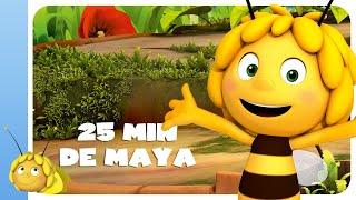 25 min de MAYA L'ABEILLE