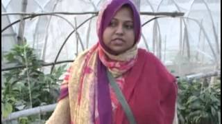 Banglar Krishi - 157 (Capsicam+Online Fartilizer+Paribarik Khamer)