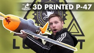3D Printed Plane Meets Blizzard!
