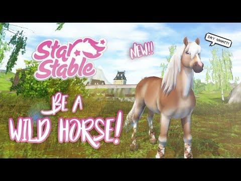 Xxx Mp4 Be A WILD Horse GoWild Star Stable Updates 3gp Sex