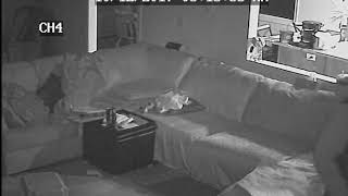 VIDEO: Man robs mom while kids are asleep