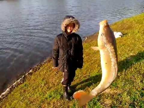 вся рыбалка в пензенской области