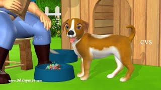 Bingo Song | Bingo Rhymes For Children + More 3D Animation Nursery Rhymes & Kids