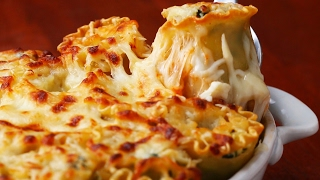 Download Spinach-Artichoke Lasagna Roll-Ups 3Gp Mp4