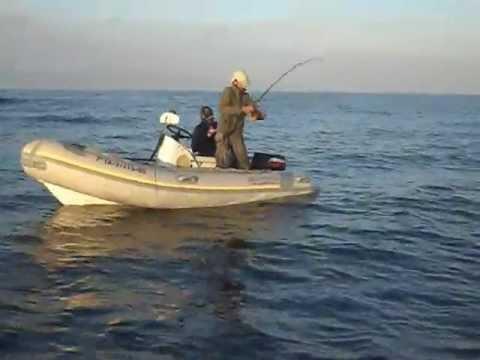 pesca desde embarcacion 51