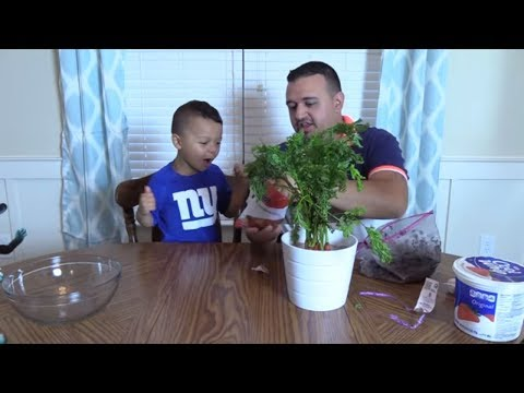 ANTHONY EATS MUD DIRTY MUDDY PRANK BOY RUINS MOMS NEW PLANT DINGLE HOPPERZ
