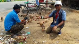 Birds Lover Snake rescue team Panchet dam(N G O)