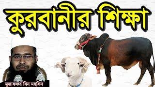 Bangla Waz 2017 কুরবানীর শিক্ষা Qurbani Shikkha by Mujaffor bin Mohsin   Free Bangla Waz   Qurbani