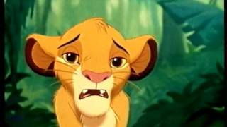 VHS Video of Lion King onto DVD