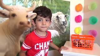 Learn Animals for Children, Toddlers and Babies   Animals with Sound Kids Education