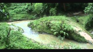 Nishorgo_Nirob, Eco-cottage, Srimongol, Bangladesh