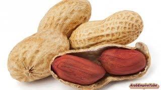 هل تعلم ماذا يحدث للمرأة إذا أكلت حفنة من الفول السوداني ؟ لن تصدق
