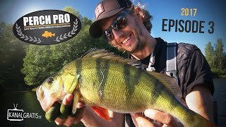 Perch Pro 2017 - EPISODE 3 - Kanalgratis.se (with German, French & Dutch subtitles)