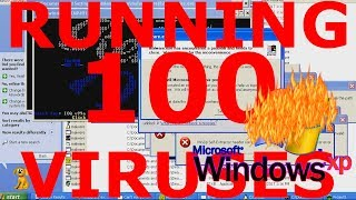 What happens if you run 100 viruses on Windows XP?