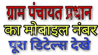 ग्राम पंचायत प्रधान का मोबाइल नंबर पूरा डिटेल्स देखे | pradhan ka details kaise nikale