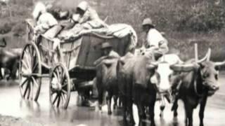 Civil War - 40 acres and a mule
