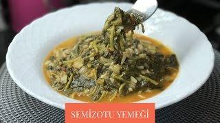 Semizotu Yemeği Tarifi - Naciye Kesici - Yemek Tarifleri
