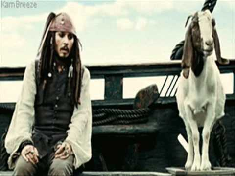 jack sparrow - pirate doctor