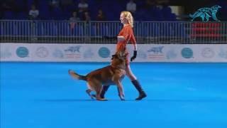 FCI Dog dance World Championship 2016 – Winner heelwork to music - Ilina Polina and Ilim (Russia)