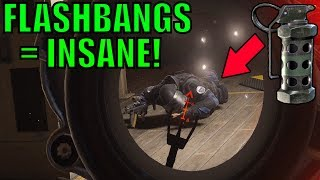 Flashbangs Are Underrated! - Rainbow Six Siege Gameplay