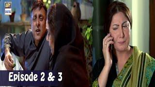 Mubarak Ho Beti Hui Hai - Double Episode - 26th April 2017 - ARY Digital Drama