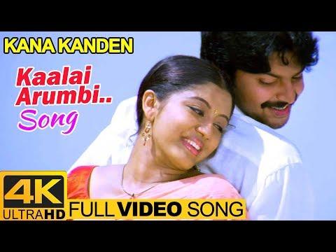 Tamil Hits | Kaalai Arumbi Video Song 4K | Kana Kanden Movie Songs | Srikanth | Gopika | Vidyasagar
