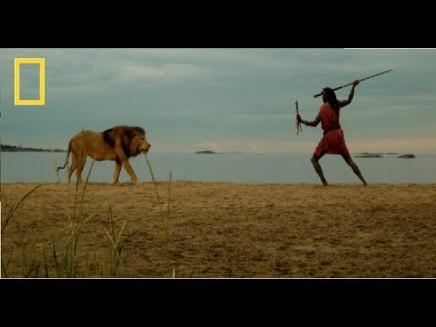 Xxx Mp4 National Geographic Facing The Lion By Maasai Warriors Documentary 3gp Sex