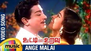 Ooty Varai Uravu Tamil Movie Songs | Ange Malai Video Song | Sivaji Ganesan | KR Vijaya