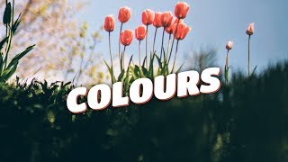 Zeus X Crona & Denis Elezi & Chris Linton - Colours (Lyrics Video) [No Copyright]