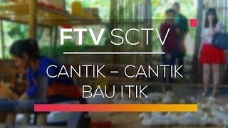 FTV SCTV - Cantik Cantik Bau Itik