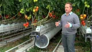 Greenhouse promo video for Nature Fresh Farms Leamington