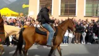 SFILATA DI CAVALLI E MANDRIA DI MUCCHE A DEMONTE (CN). 14 - 10 - 2012.